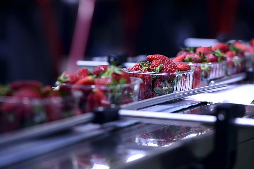 El software para chapa Lantek, dirige la producción de máquinas de alta calidad para la industria alimentaria